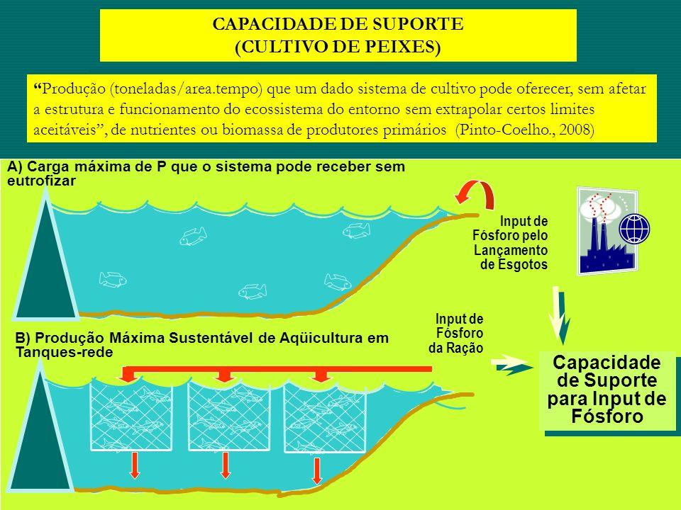 Capacidade de Suporte para Input de Fósforo