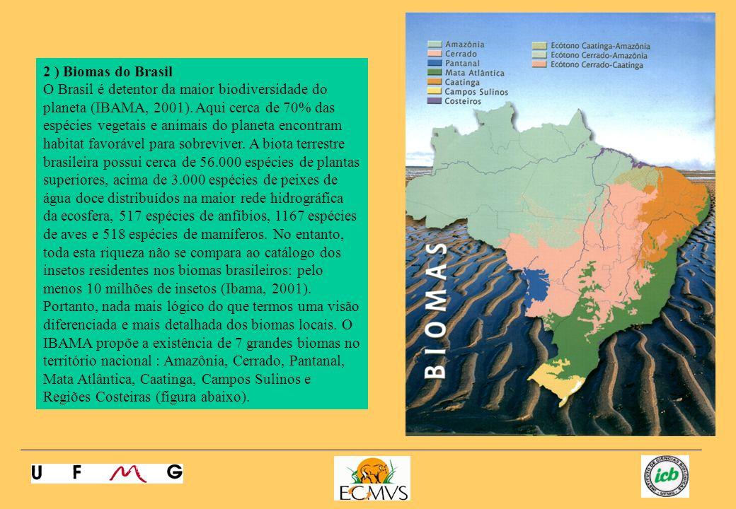 2 ) Biomas do Brasil
