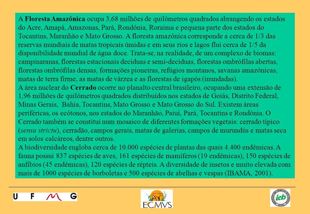 A Floresta Amazônica ocupa 3,68 milhões de quilômetros quadrados abrangendo os estados do Acre, Amapá, Amazonas, Pará, Rondônia, Roraima e pequena parte dos estados do Tocantins, Maranhão e Mato Grosso. A floresta amazônica corresponde a cerca de 1/3 das reservas mundiais de matas tropicais úmidas e em seus rios e lagos flui cerca de 1/5 da disponibilidade mundial de água doce. Trata-se, na realidade, de um complexo de biomas: campinaranas, florestas estacionais decíduas e semi-decíduas, florestas ombrófilas abertas, florestas ombrófilas densas, formações pioneiras, refúgios montanos, savanas amazônicas, matas de terra firme, as matas de várzea e as florestas de igapós (inundadas).