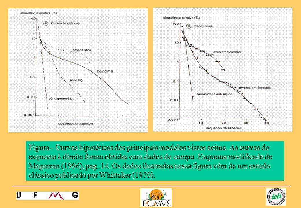 Figura - Curvas hipotéticas dos principais modelos vistos acima