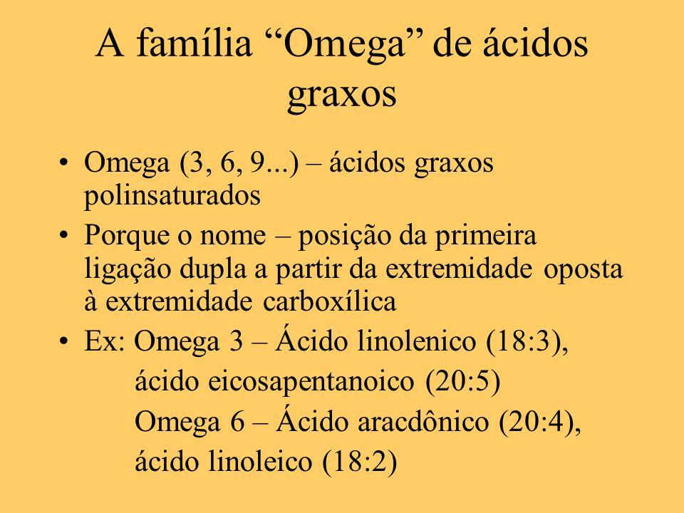 A família Omega de ácidos graxos