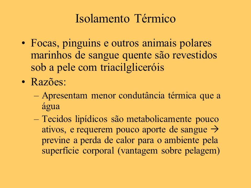 Isolamento Térmico Focas, pinguins e outros animais polares marinhos de sangue quente são revestidos sob a pele com triacilgliceróis.