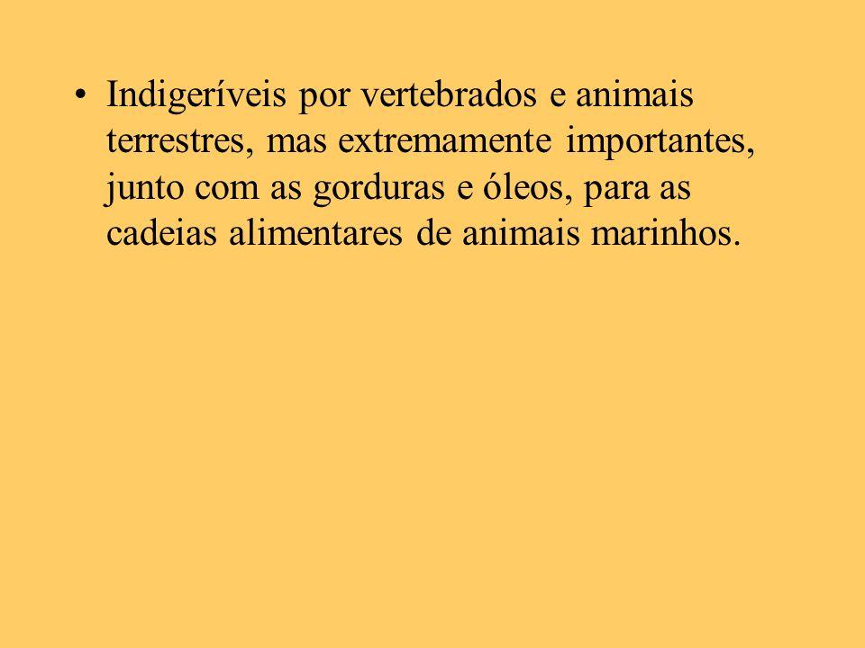 Indigeríveis por vertebrados e animais terrestres, mas extremamente importantes, junto com as gorduras e óleos, para as cadeias alimentares de animais marinhos.