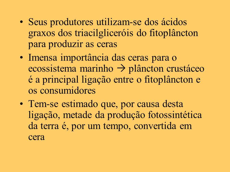 Seus produtores utilizam-se dos ácidos graxos dos triacilgliceróis do fitoplâncton para produzir as ceras