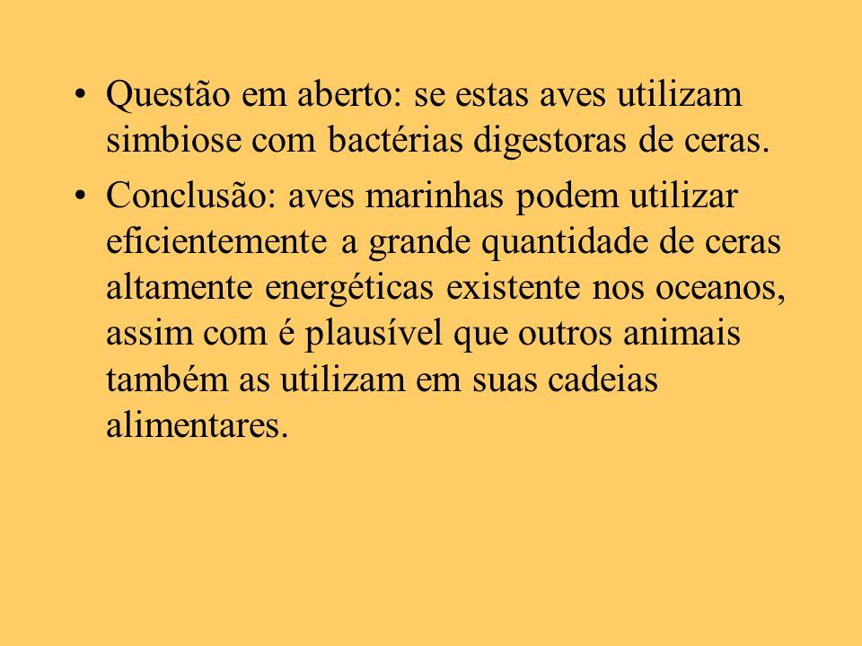 Questão em aberto: se estas aves utilizam simbiose com bactérias digestoras de ceras.