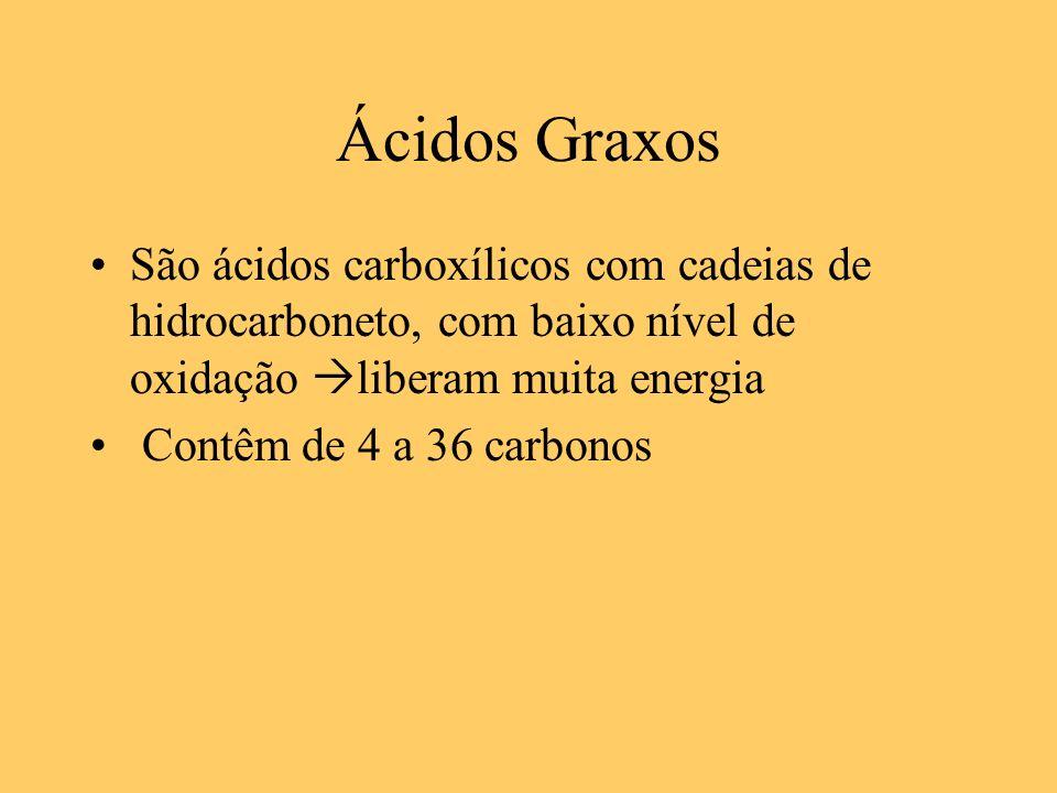 Ácidos Graxos São ácidos carboxílicos com cadeias de hidrocarboneto, com baixo nível de oxidação liberam muita energia.