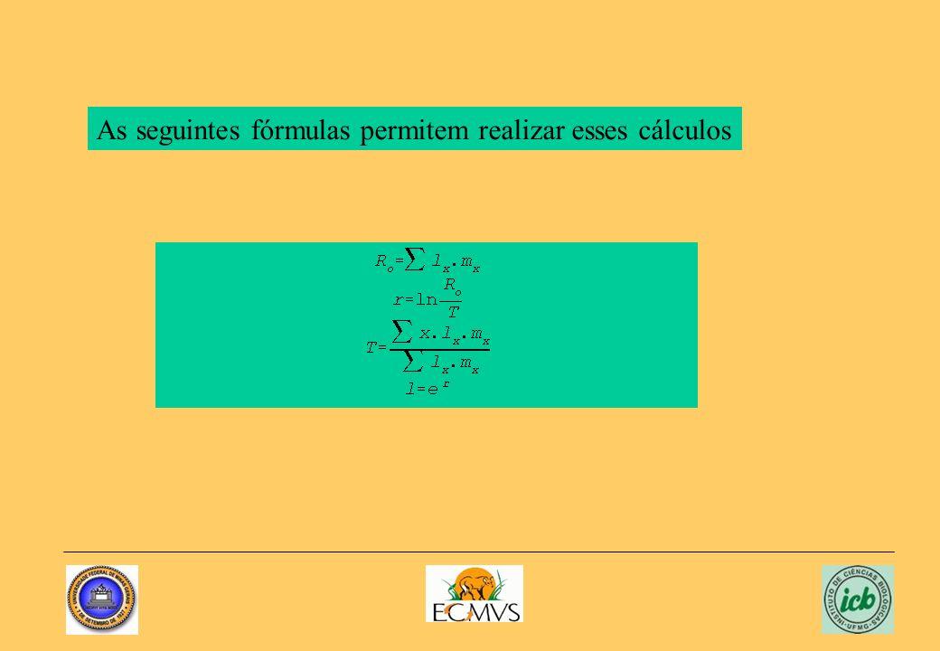 As seguintes fórmulas permitem realizar esses cálculos