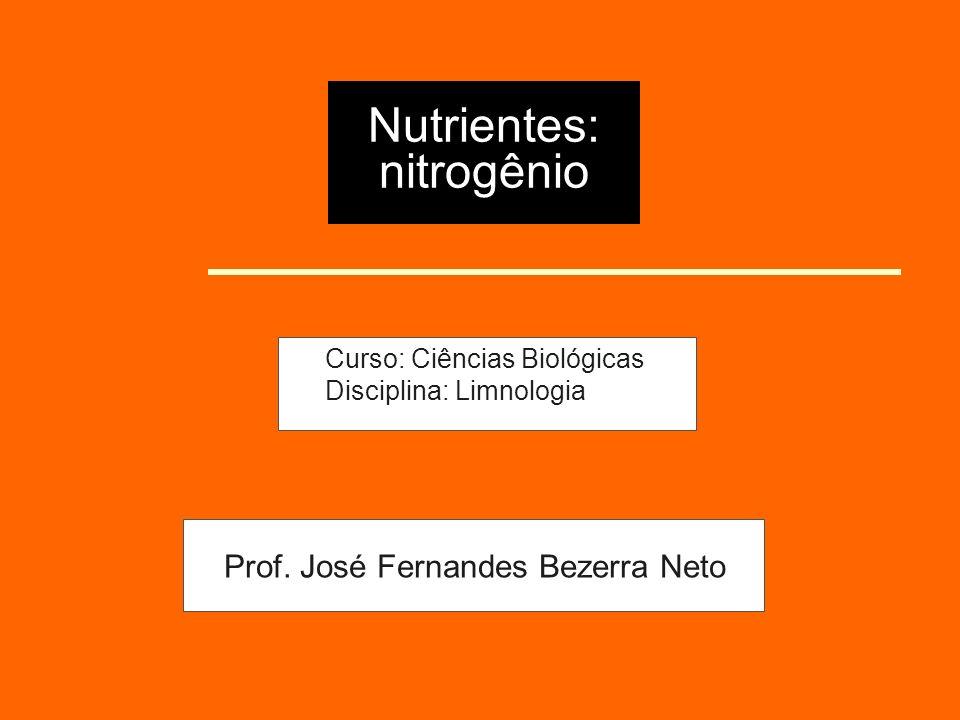 Nutrientes: nitrogênio