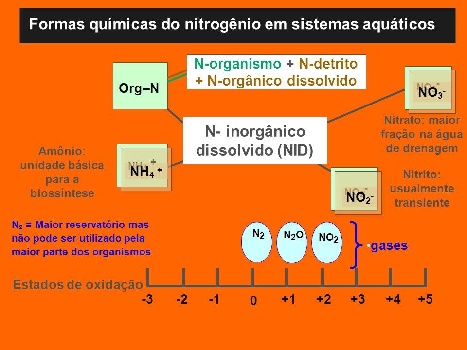 Formas químicas do nitrogênio em sistemas aquáticos