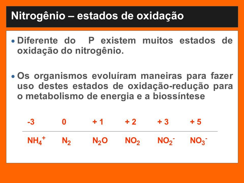 Nitrogênio – estados de oxidação