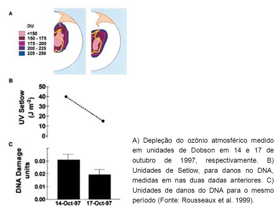 A) Depleção do ozônio atmosférico medido em unidades de Dobson em 14 e 17 de outubro de 1997, respectivamente.