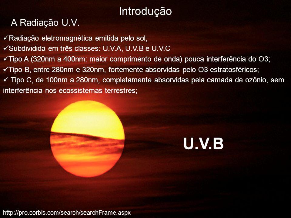 U.V.B Introdução A Radiação U.V.
