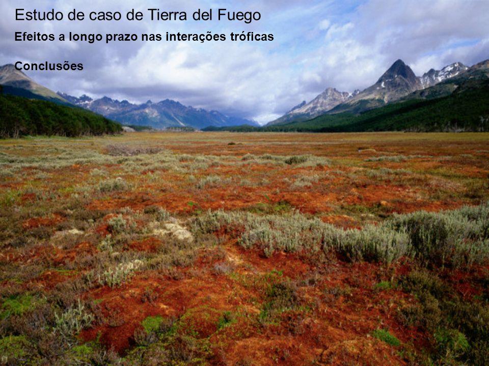 Estudo de caso de Tierra del Fuego