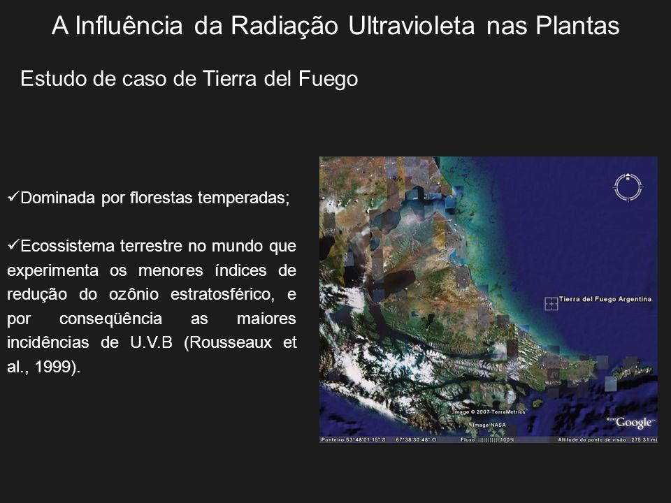 A Influência da Radiação Ultravioleta nas Plantas