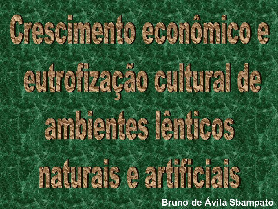 Crescimento econômico e eutrofização cultural de ambientes lênticos