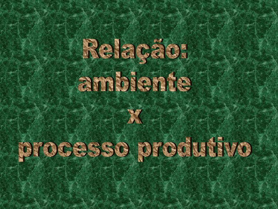 Relação: ambiente x processo produtivo