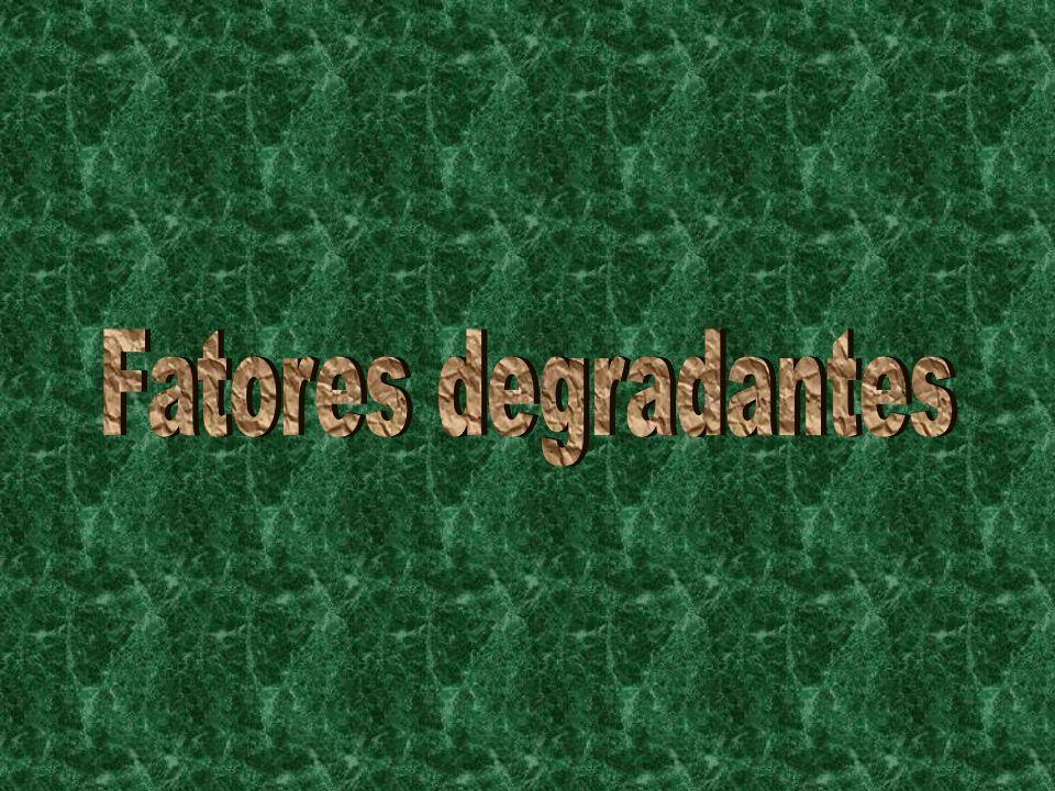 Fatores degradantes