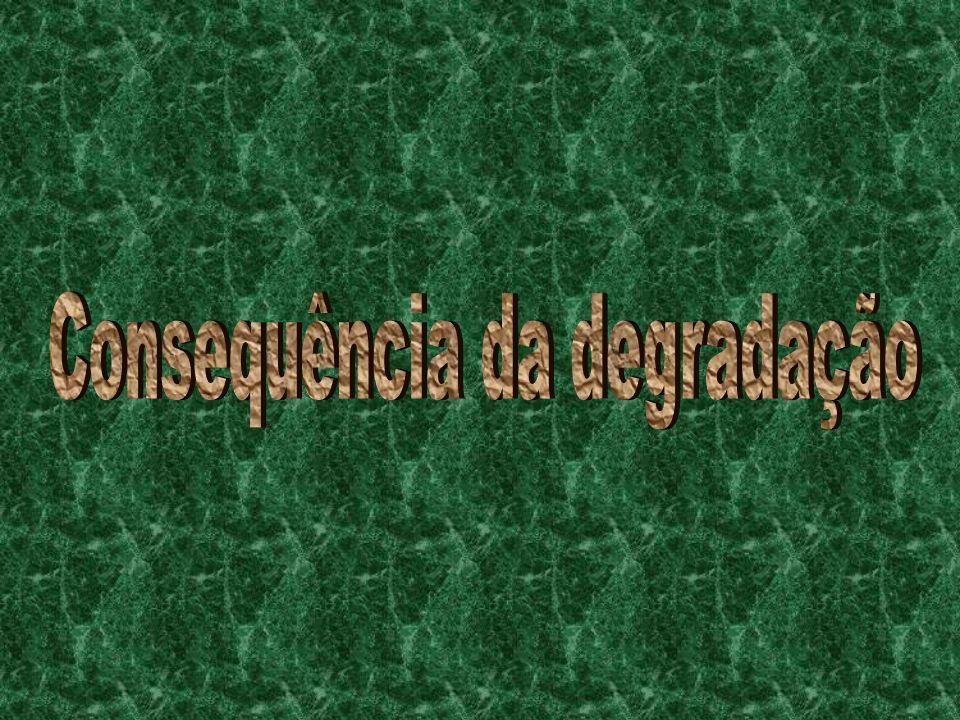 Consequência da degradação