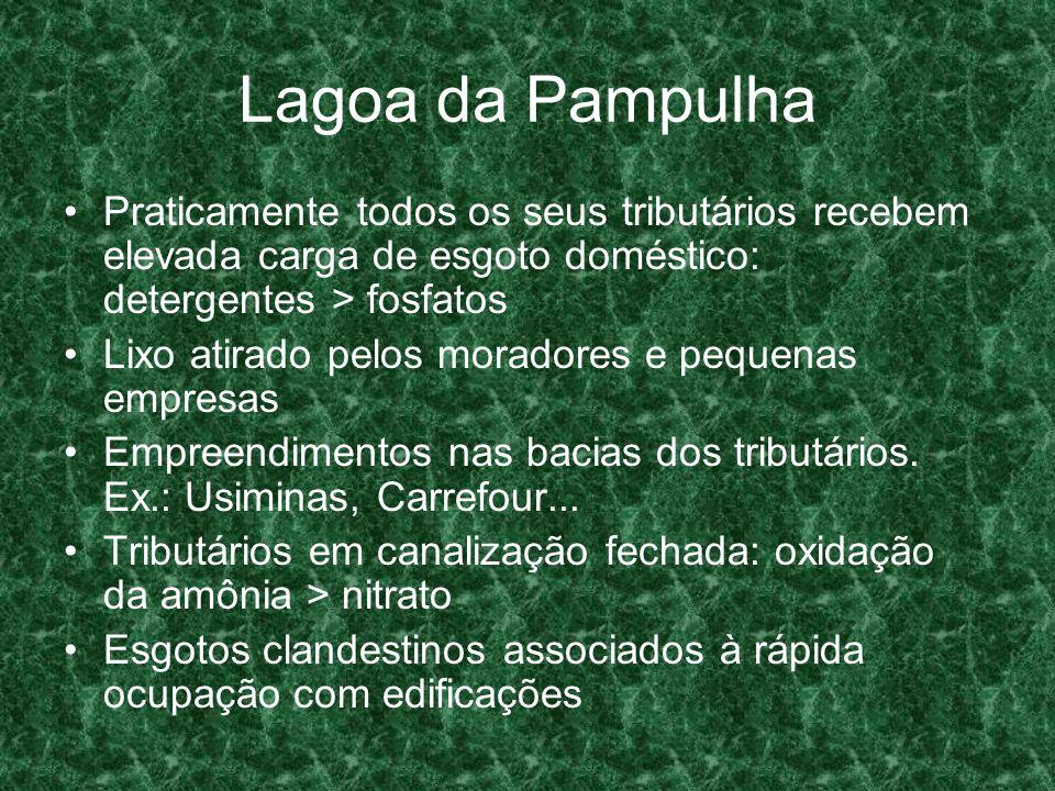 Lagoa da PampulhaPraticamente todos os seus tributários recebem elevada carga de esgoto doméstico: detergentes > fosfatos.