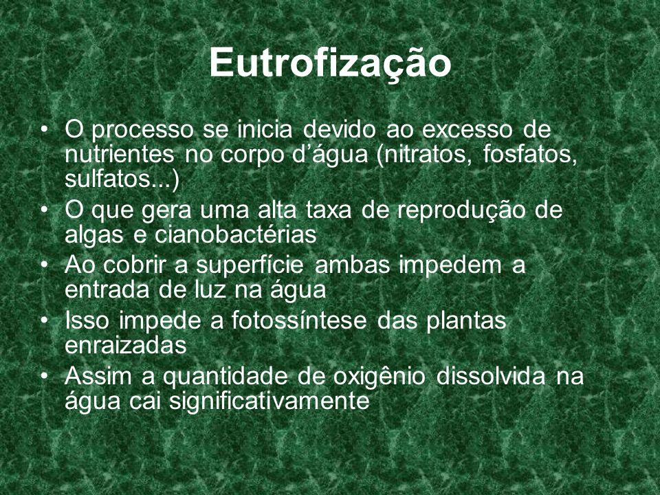 EutrofizaçãoO processo se inicia devido ao excesso de nutrientes no corpo d'água (nitratos, fosfatos, sulfatos...)