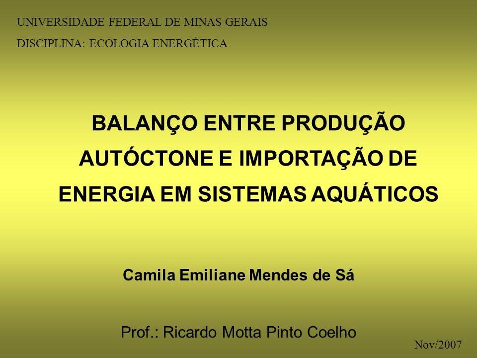 Camila Emiliane Mendes de Sá