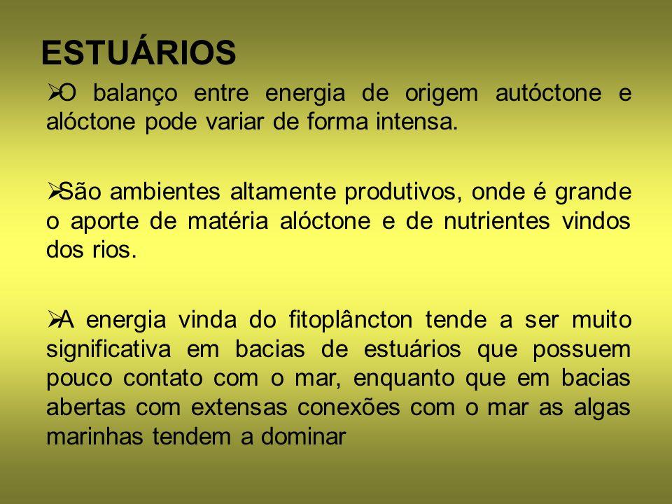 ESTUÁRIOS O balanço entre energia de origem autóctone e alóctone pode variar de forma intensa.