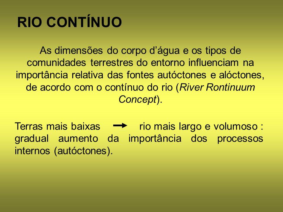 RIO CONTÍNUO