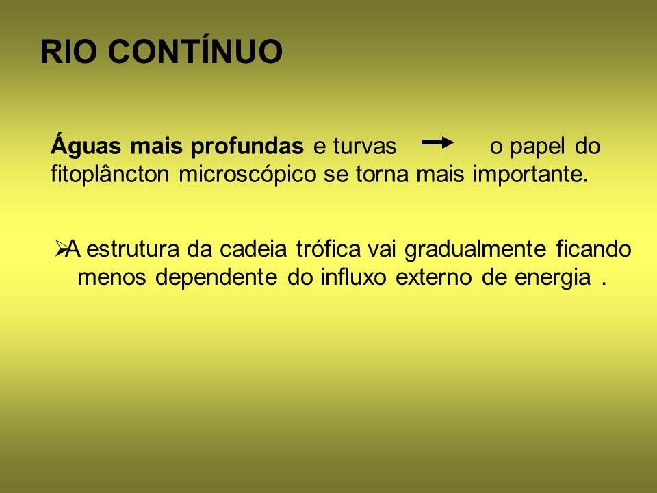 RIO CONTÍNUO A estrutura da cadeia trófica vai gradualmente ficando menos dependente do influxo externo de energia .