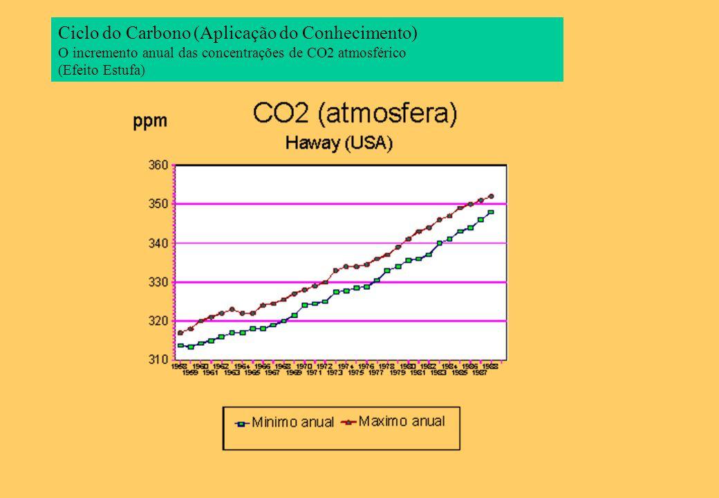 Ciclo do Carbono (Aplicação do Conhecimento)