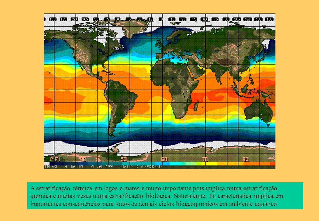 A estratificação térmica em lagos e mares é muito importante pois implica numa estratificação química e muitas vezes numa estratificação biológica.