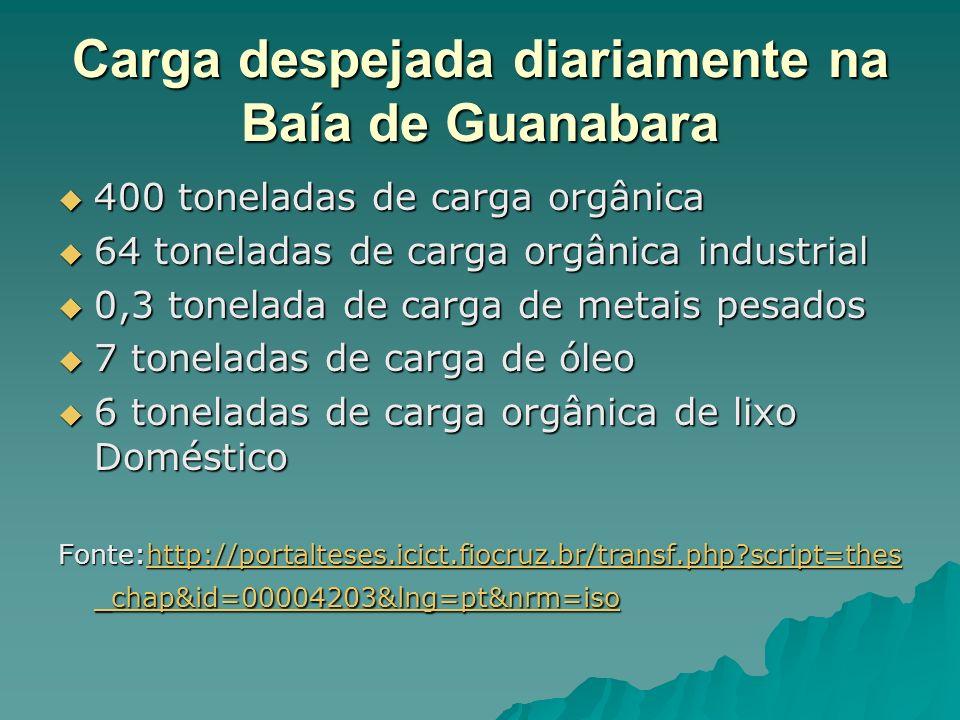 Carga despejada diariamente na Baía de Guanabara