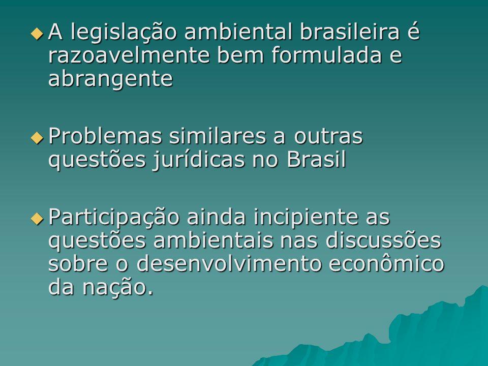 A legislação ambiental brasileira é razoavelmente bem formulada e abrangente
