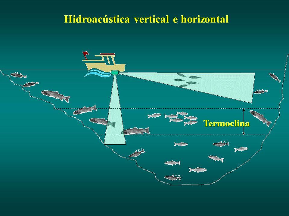 Hidroacústica vertical e horizontal