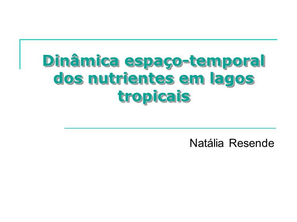 Dinâmica espaço-temporal dos nutrientes em lagos tropicais