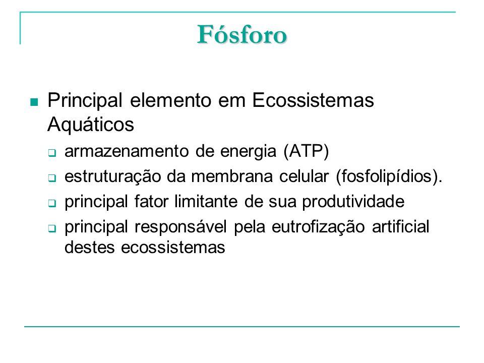 Fósforo Principal elemento em Ecossistemas Aquáticos