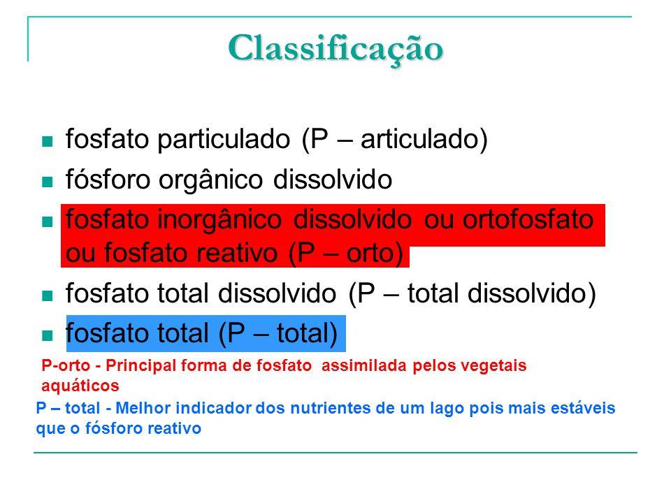Classificação fosfato particulado (P – articulado)