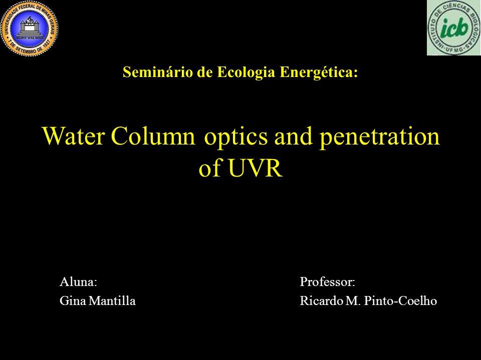 Seminário de Ecologia Energética: