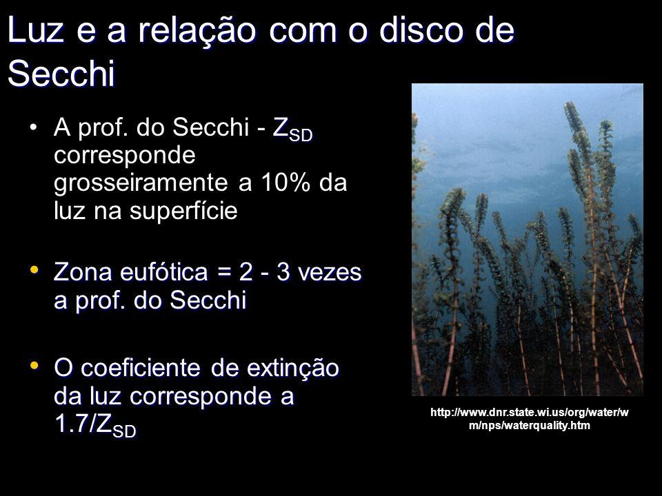 Luz e a relação com o disco de Secchi