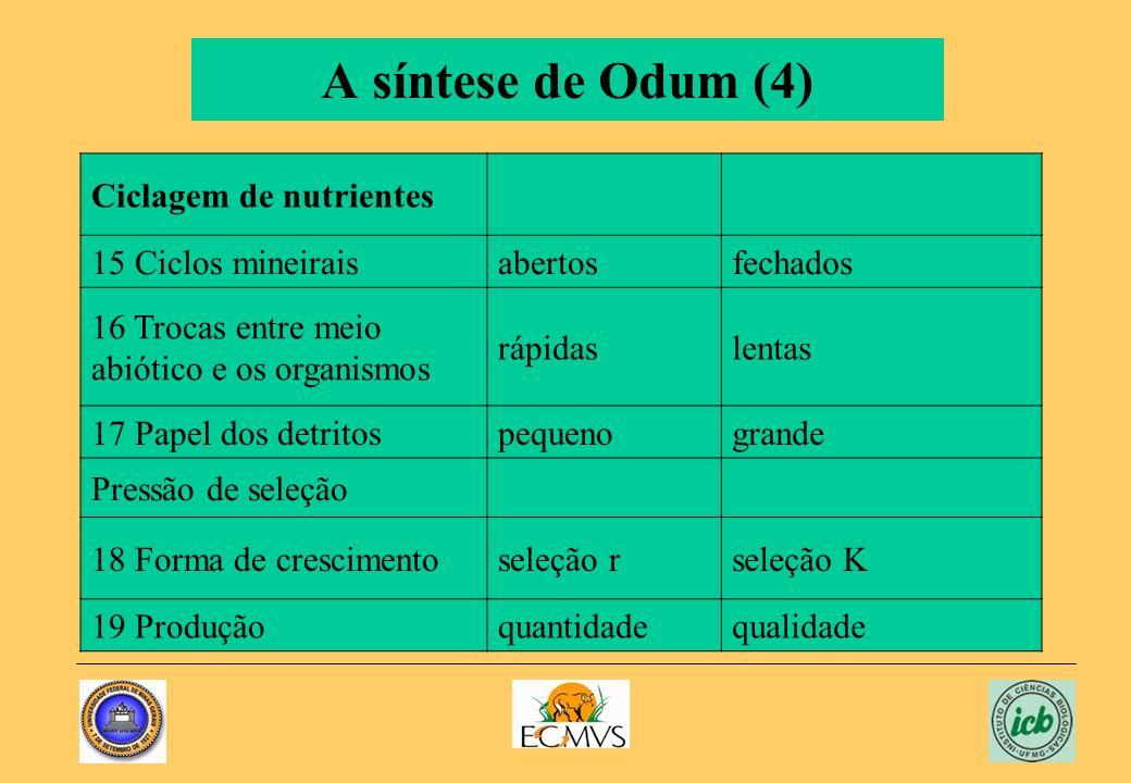 A síntese de Odum (4) Ciclagem de nutrientes 15 Ciclos mineirais