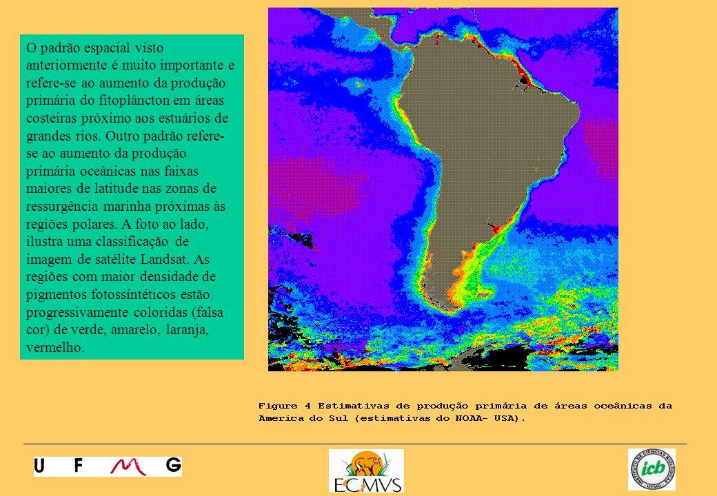O padrão espacial visto anteriormente é muito importante e refere-se ao aumento da produção primária do fitoplâncton em áreas costeiras próximo aos estuários de grandes rios.