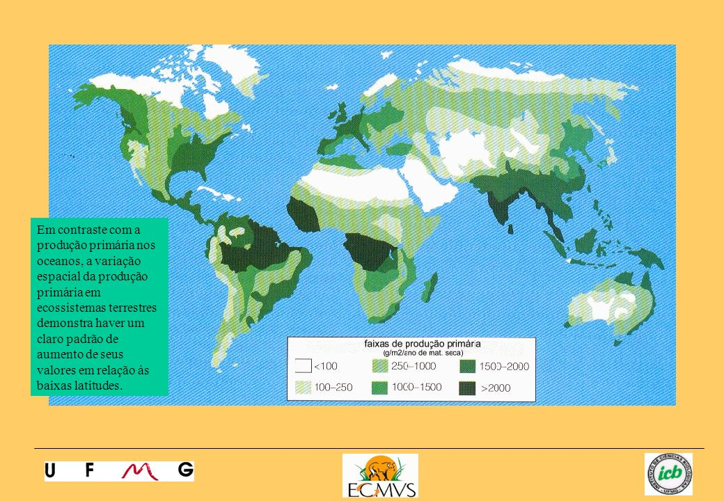 Em contraste com a produção primária nos oceanos, a variação espacial da produção primária em ecossistemas terrestres demonstra haver um claro padrão de aumento de seus valores em relação às baixas latitudes.