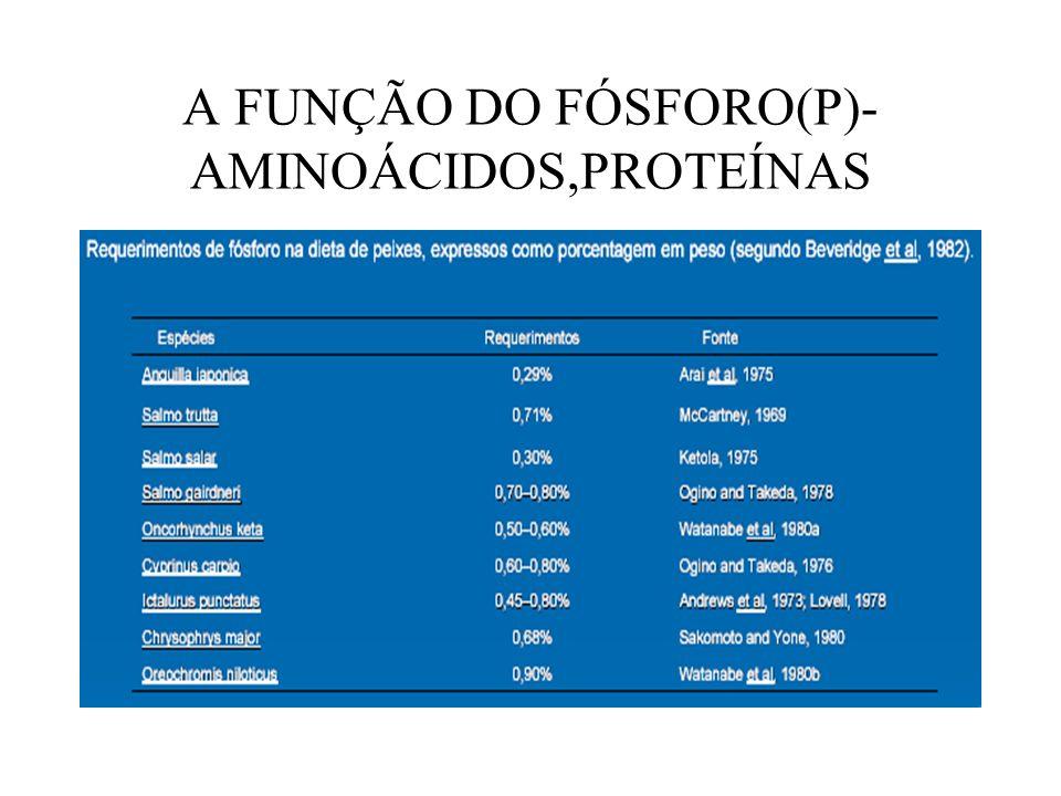 A FUNÇÃO DO FÓSFORO(P)-AMINOÁCIDOS,PROTEÍNAS
