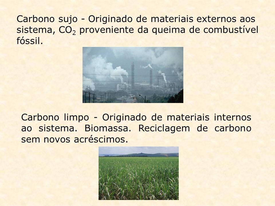 Carbono sujo - Originado de materiais externos aos sistema, CO2 proveniente da queima de combustível fóssil.