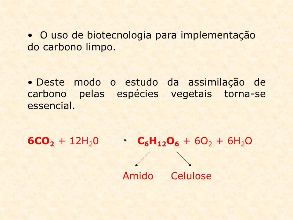 O uso de biotecnologia para implementação do carbono limpo.