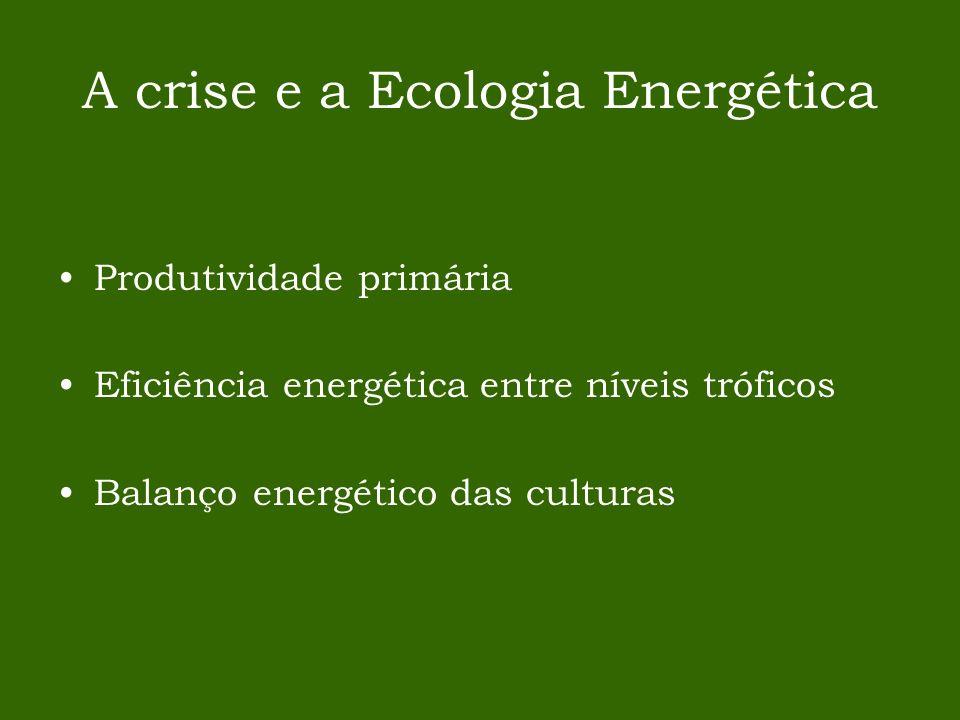 A crise e a Ecologia Energética