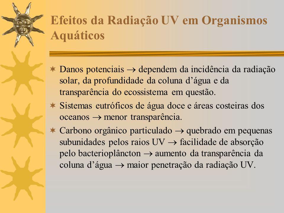 Efeitos da Radiação UV em Organismos Aquáticos