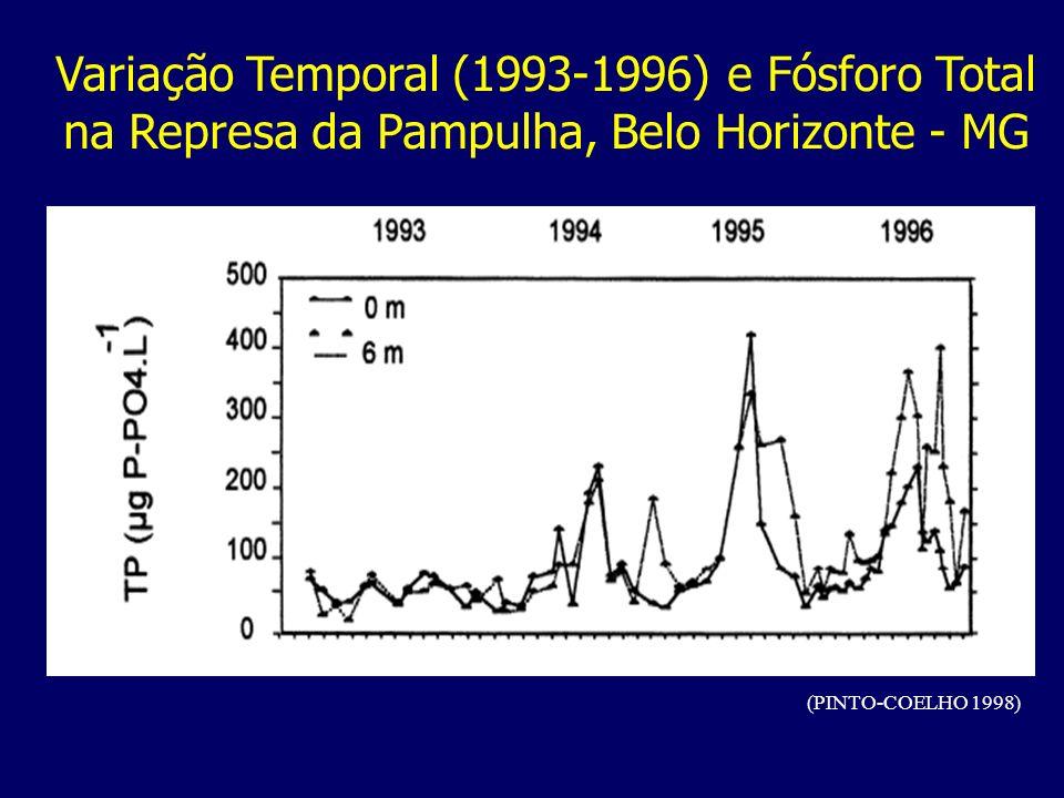 Variação Temporal (1993-1996) e Fósforo Total na Represa da Pampulha, Belo Horizonte - MG