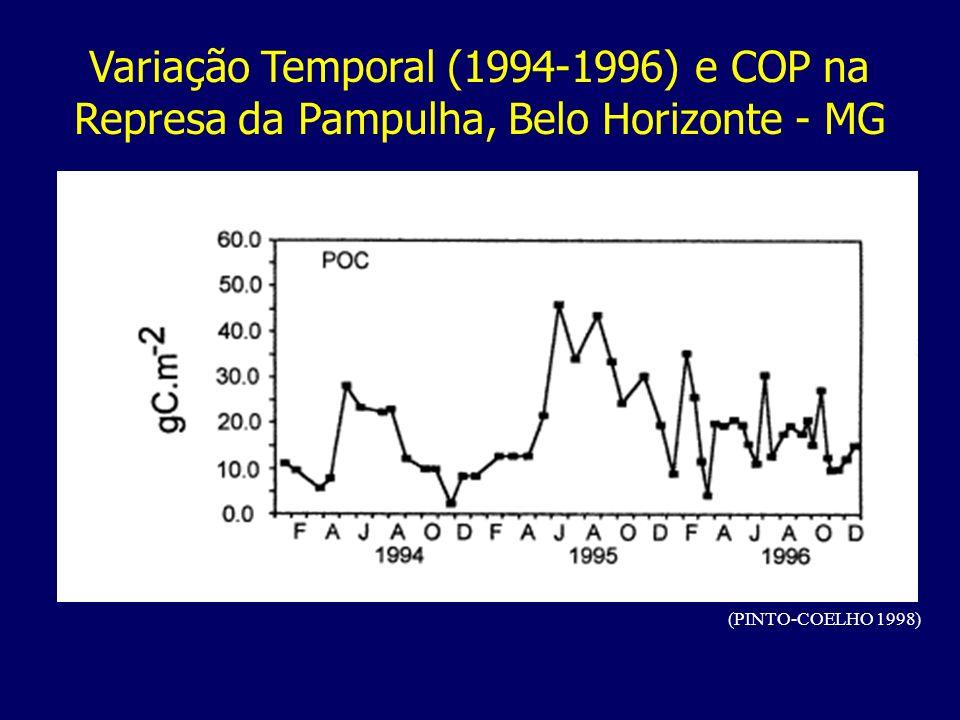 Variação Temporal (1994-1996) e COP na Represa da Pampulha, Belo Horizonte - MG
