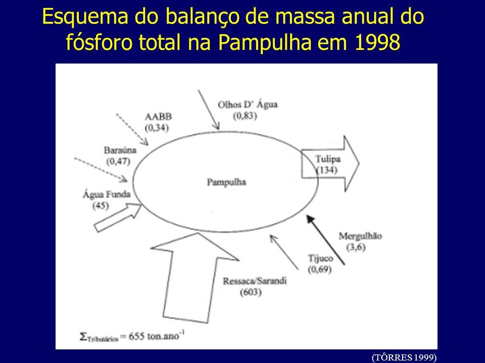 Esquema do balanço de massa anual do fósforo total na Pampulha em 1998