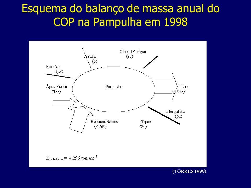 Esquema do balanço de massa anual do COP na Pampulha em 1998